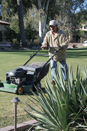 Friendswood  Lawn Mowing Services